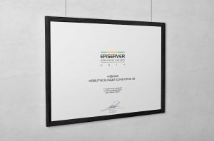 Episerver - associated partner