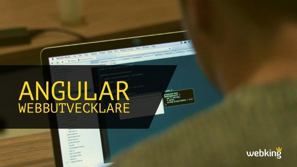 Webbutvecklare med fokus på angular och rest