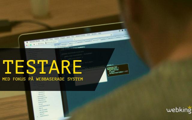 Testare med fokus på webbaserade system
